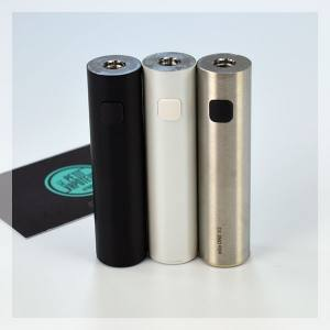 Batterie Ego One V2