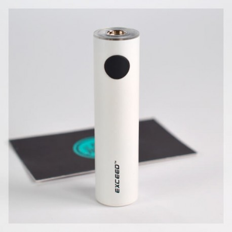 Exceed D19 Battery