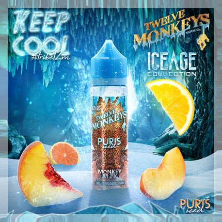 Puris Iced Twelve Monkeys 50 ml